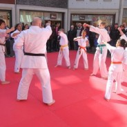 Why Teens Should Add Karate Classes to Their Sporting Activities