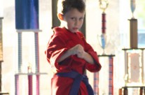 Young Purple Belt Student Practicing Karate Moves