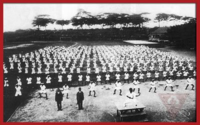 The History of Karate – An Infographic