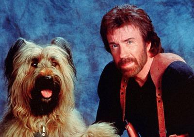 Chuck Norris as Jake Wilder in Top Dog (1995)