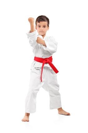 Good Taekwondo Schools for Families