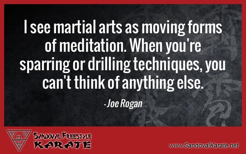 Joe Rogan Martial Arts Quote