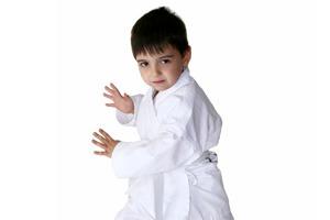 Little Dragons Karate Kids