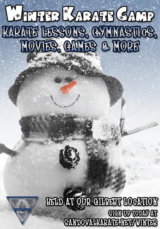 Winter Karate Camp Gilbert AZ