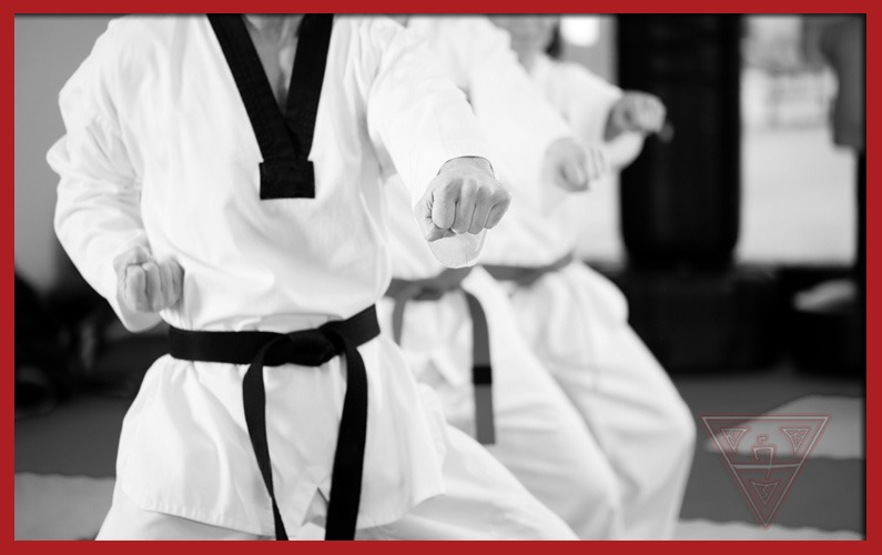 How Does the Belt System at Sandoval Freestyle Karate Work?