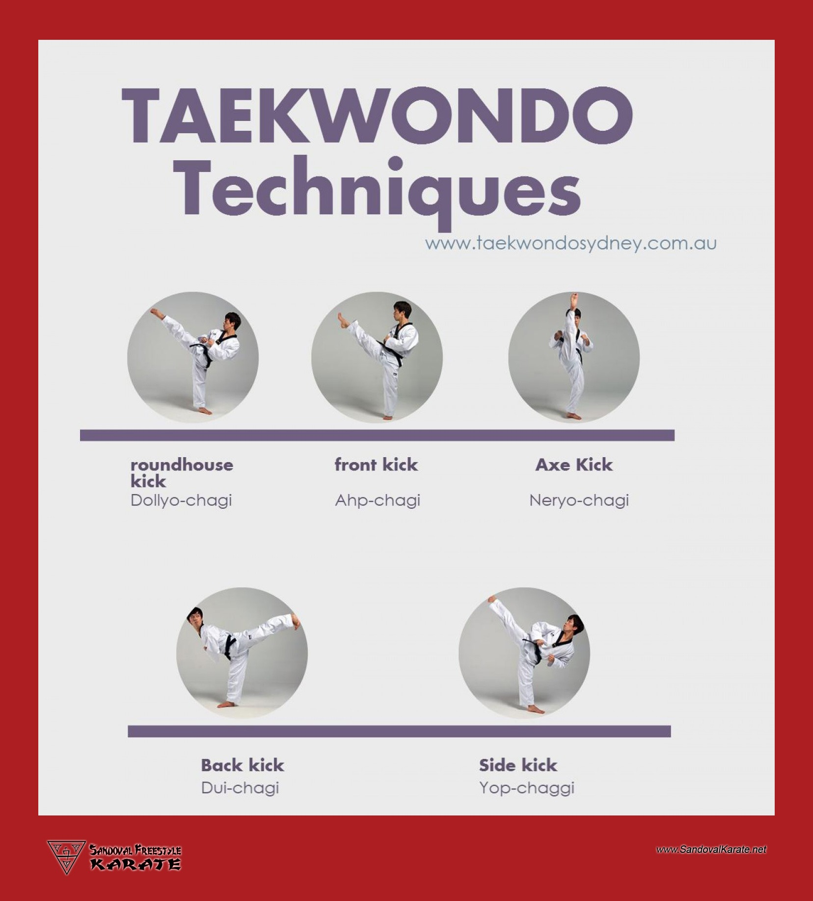 Taekwondo Techniques Infographic